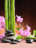 Spa concept. With zen stones and  orchid Royalty Free Stock Images