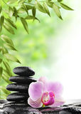 Spa concept. With zen stones and flower Stock Photography