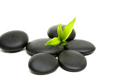 Spa concept. Zen stones and bamboo- spa frame Royalty Free Stock Images