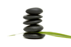 Spa concept. Black zen pebbles and a young green leaf Royalty Free Stock Photography