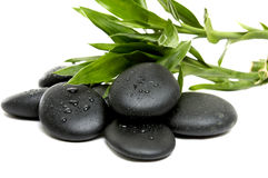 Spa concept. Black zen pebbles and a bamboo leaves Stock Images