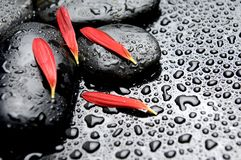 Spa concept. Wet Spa stone on red petal Royalty Free Stock Image