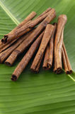 Spa concept. Sandalwood incense cones on banana leaf Stock Image