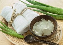 Spa concept with aloe vera Royalty Free Stock Images