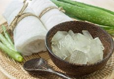 Spa concept with aloe vera stock image