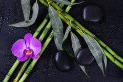 Spa concept with zen stones, orchid flower and bamboo stock photo