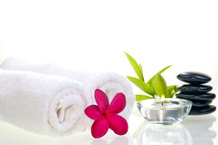 Spa concept with black zen stones and red flower Royalty Free Stock Image