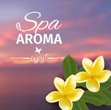 Spa concept with blurred seaside background and realistic vector frangipani Royalty Free Stock Images