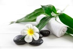 Spa concept with candle, stone, flower and bamboo Royalty Free Stock Photography