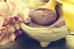 Spa Concept. Closeup of beautiful Spa Products with place for te Royalty Free Stock Photo