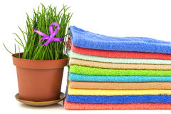 Spa concept with colorful towels and grass on white background Royalty Free Stock Photos