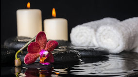 Spa concept of deep purple orchid (phalaenopsis), zen stones Stock Image