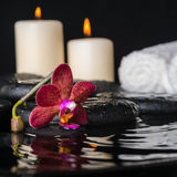 spa concept of deep purple orchid (phalaenopsis), zen stones Royalty Free Stock Photo