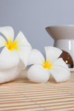 Spa Concept: Frangipani flowers, aroma candles. On bamboo mats royalty free stock image