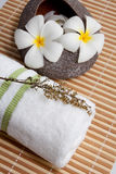 Spa Concept: Frangipani flowers, white towel. On bamboo mats stock images