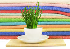 Spa concept with grass and towels Royalty Free Stock Images