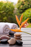 Spa concept with heliconia and zen stones Stock Photos