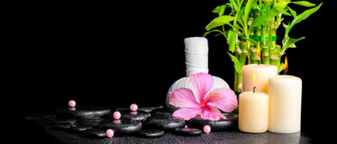 spa concept of hibiscus flower, bamboo, thai herbal compress ball, beads and candles on zen basalt stones with drops, panorama royalty free stock photos