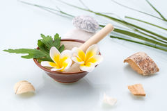 Spa concept with Mortar and Pestle, Flowers, leaf and stone Stock Images