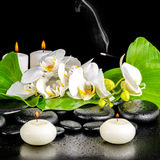 Spa concept of orchid flower, phalaenopsis, leaf with dew, candl Royalty Free Stock Photo