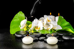 Spa concept of orchid flower, phalaenopsis, leaf with dew, candl Stock Photography