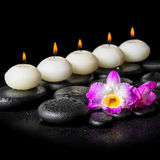 Spa concept of orchid flower and row white candles on black zen Royalty Free Stock Photo