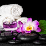 Spa concept of orchid flower, zen basalt stones with drops, purp Royalty Free Stock Photography