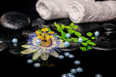 Spa concept of passiflora flower, branch fern, towels, zen basal Royalty Free Stock Photography