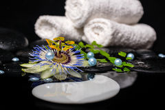 Spa concept of passiflora flower, branches, towels, zen basalt s Royalty Free Stock Images