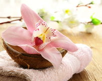 Spa concept - pink orchid Stock Images
