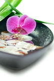 Spa concept: purple orchid, bamboo and shells Stock Photography