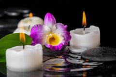 Spa concept of purple orchid dendrobium, leaf with dew and candl Stock Image