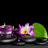 Spa concept of purple orchid dendrobium, leaf with dew, candles. And pearl beads on black zen stones, closeup royalty free stock photography