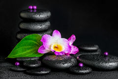 Spa concept of purple orchid flower, green leaf, pyramid zen bas Royalty Free Stock Images