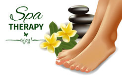 SPA concept with realistic female feet, frangipani and stones. Vector illustration. Stock Photography