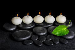 Spa concept of row white candles and green leaf on black zen sto Royalty Free Stock Image