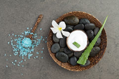Spa concept. slice aloe vera on white cream in coconut shell wit Royalty Free Stock Image
