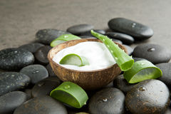 Spa concept. slice aloe vera on white cream in coconut shell wit stock photo