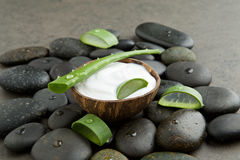 Spa concept. slice aloe vera on white cream in coconut shell wit. H stone background Royalty Free Stock Photos