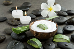 Spa concept. slice aloe vera on white cream in coconut shell wit Royalty Free Stock Photography