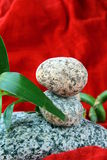 Spa concept of stones and a branch  bamboo Stock Photo