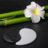 Spa concept of tropical frangipani flower, symbol Yin Yang and n Royalty Free Stock Photo
