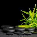 Spa concept of twigs bamboo with dew on zen basalt stones, close Stock Images