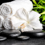 Spa concept of white hibiscus flower, bamboo and towels on zen b Stock Image