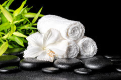 Spa concept of white hibiscus flower Stock Photo