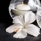 Spa concept of white hibiscus flower and candles in vase  Stock Image