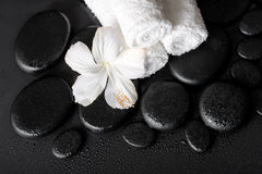 Spa concept of white hibiscus flower and towels on zen basalt st Stock Photography