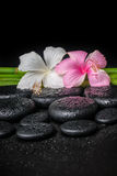Spa concept of white, pink hibiscus flower and natural bamboo on Stock Photos