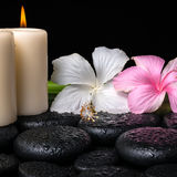 Spa concept of white, pink hibiscus flowers, candles and natural Stock Photos
