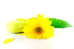 Spa concept yellow flower green leave and soup Royalty Free Stock Images